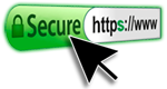 Secure Website Header